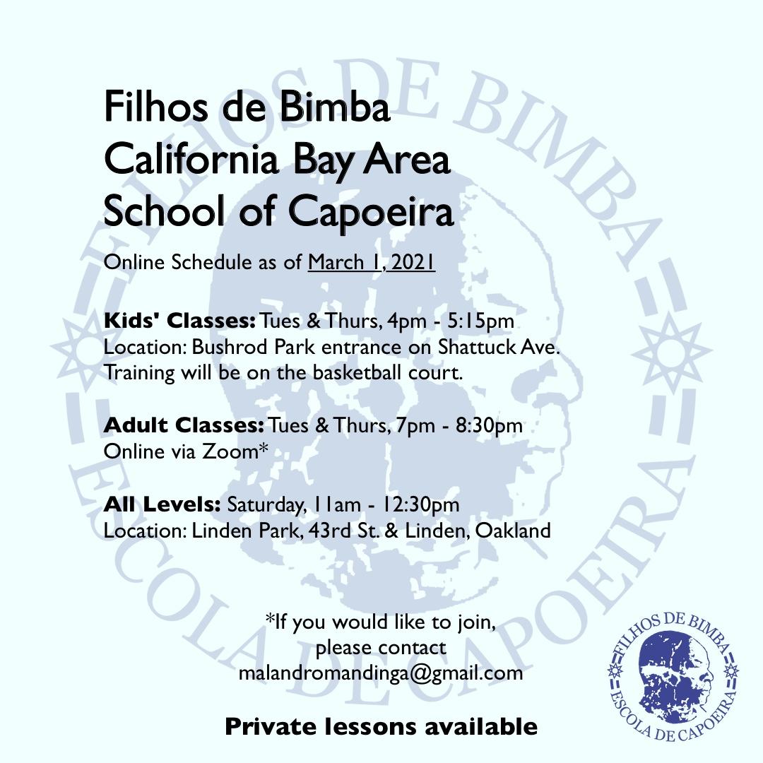 Filhos de Bimba - Online classes